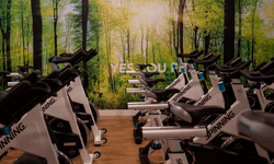 Ciclo Indoor Gim Yes You Fit Cristalia