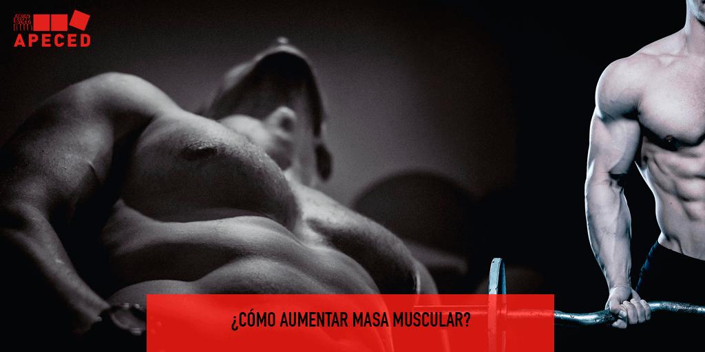 Aumentar masa muscular - Entrada blog Apeced