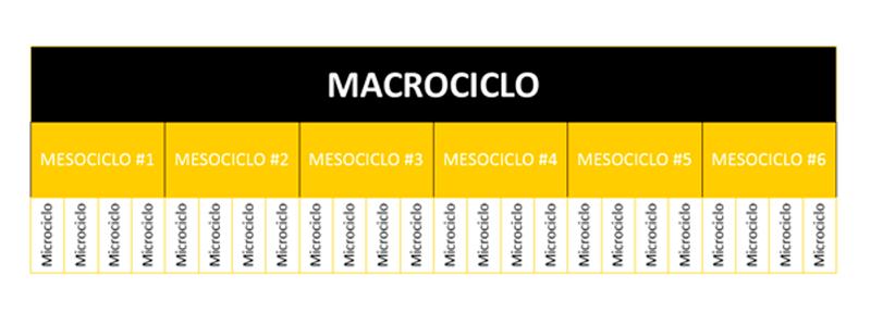 Macrociclo programación de entrenamiento - Entrada blog Apeced