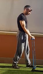Entrenamiento con bandas elásticas - Curl biceps