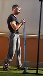 Entrenamiento con bandas elásticas - Curl biceps prono