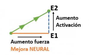 Figura4 - Fuerza
