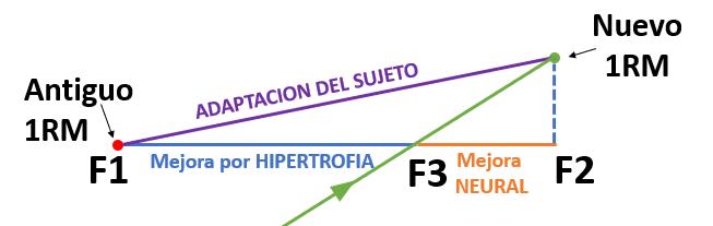 Figura 5 - Fuerza